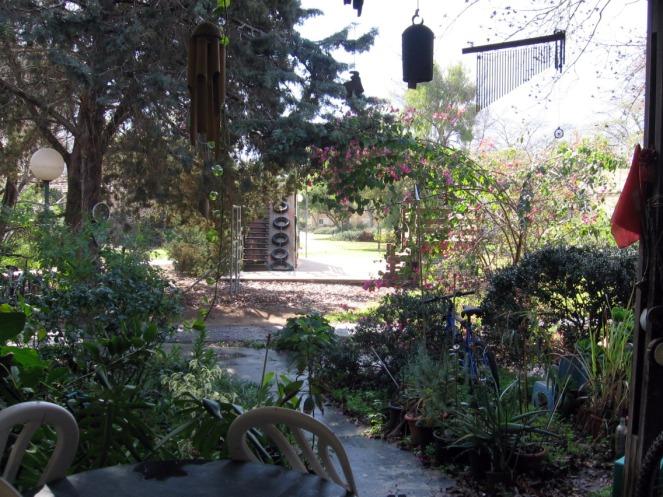 view from my front door, feb 27