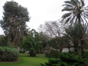 Kibbutz Nir-Oz, May 4